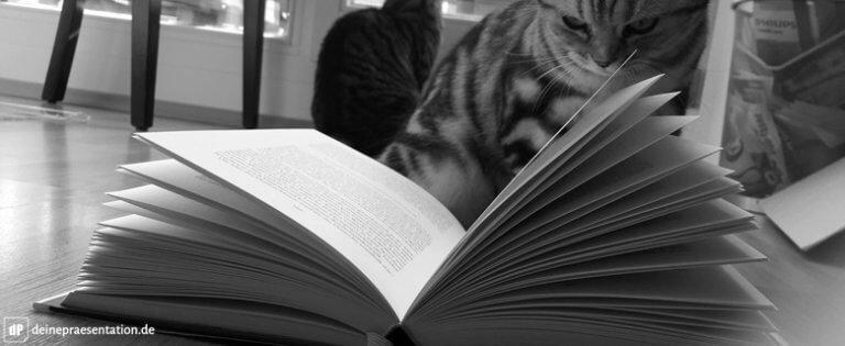 Lesetipps Beispielbild 1 Katze Buch