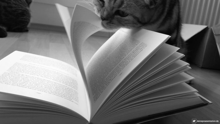 Lesetipps Beispielbild Titelbild Gross Katze Buch